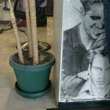 Camden Hair & Nails | 5837 Camden Ave ste c, San Jose, CA 95124, USA