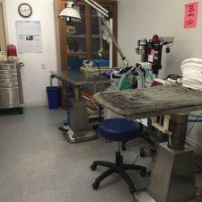 Well Pet Vet Clinic   4040 Railroad Ave, Pittsburg, CA 94565, USA