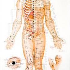 Acupuncture Health Services, 99 Country Ln, Richland, PA ...