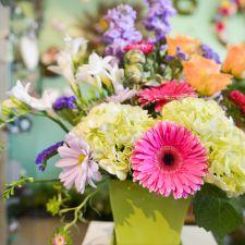 Floral Array   310 Mahanoy St, Zion Grove, PA 17985, USA