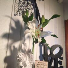 Brookside Florist   121 W Vine St, Rensselaer, IN 47978, USA