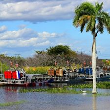 Everglades Holiday Park | 21940 Griffin Rd, Fort Lauderdale, FL 33332, USA