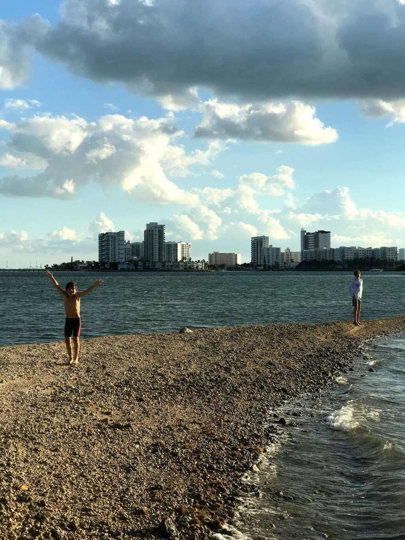 Edward K. Buckley Island - park  | Photo 2 of 10 | Address: Miami Beach, FL 33141, USA