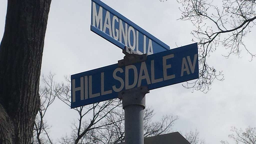 Hillsdale United Methodist Church - church    Photo 4 of 10   Address: 349 Hillsdale Ave, Hillsdale, NJ 07642, USA   Phone: (201) 664-5231