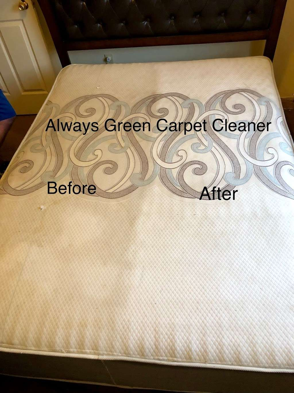 Always Green Carpet Cleaner Queens NY - 20%OFF Rug Cleaning & Up - laundry  | Photo 8 of 10 | Address: 8320 98th St, Woodhaven, NY 11421, USA | Phone: (917) 475-0141