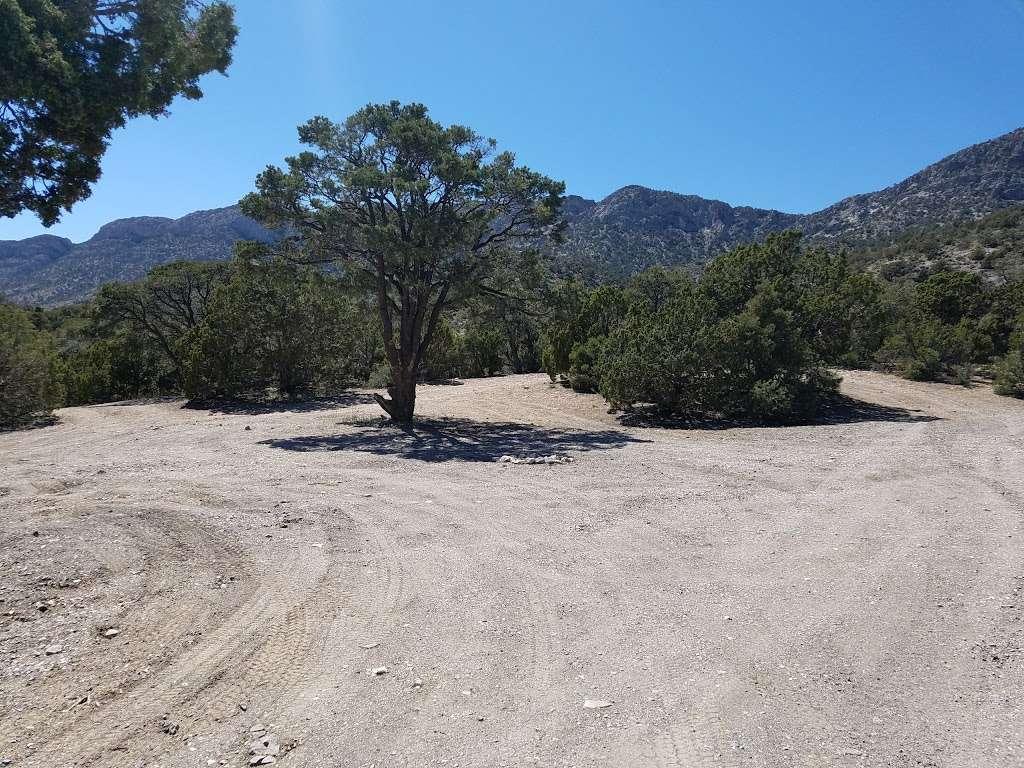 Camp Potosi Park - park    Photo 6 of 10   Address: 11480 Mount Potosi Canyon Rd, Las Vegas, NV 89124, USA   Phone: (702) 455-8200