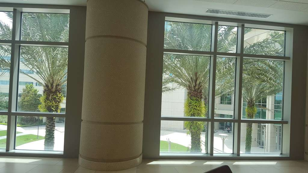 UCF College of Medicine - university  | Photo 6 of 8 | Address: 6850 Lake Nona Blvd, Orlando, FL 32827, USA | Phone: (407) 266-1000