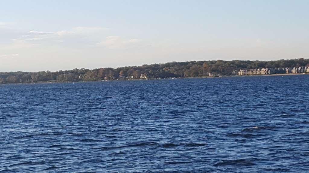 Horn Point Park - park  | Photo 6 of 10 | Address: Chesapeake Landing, Annapolis, MD 21403, USA