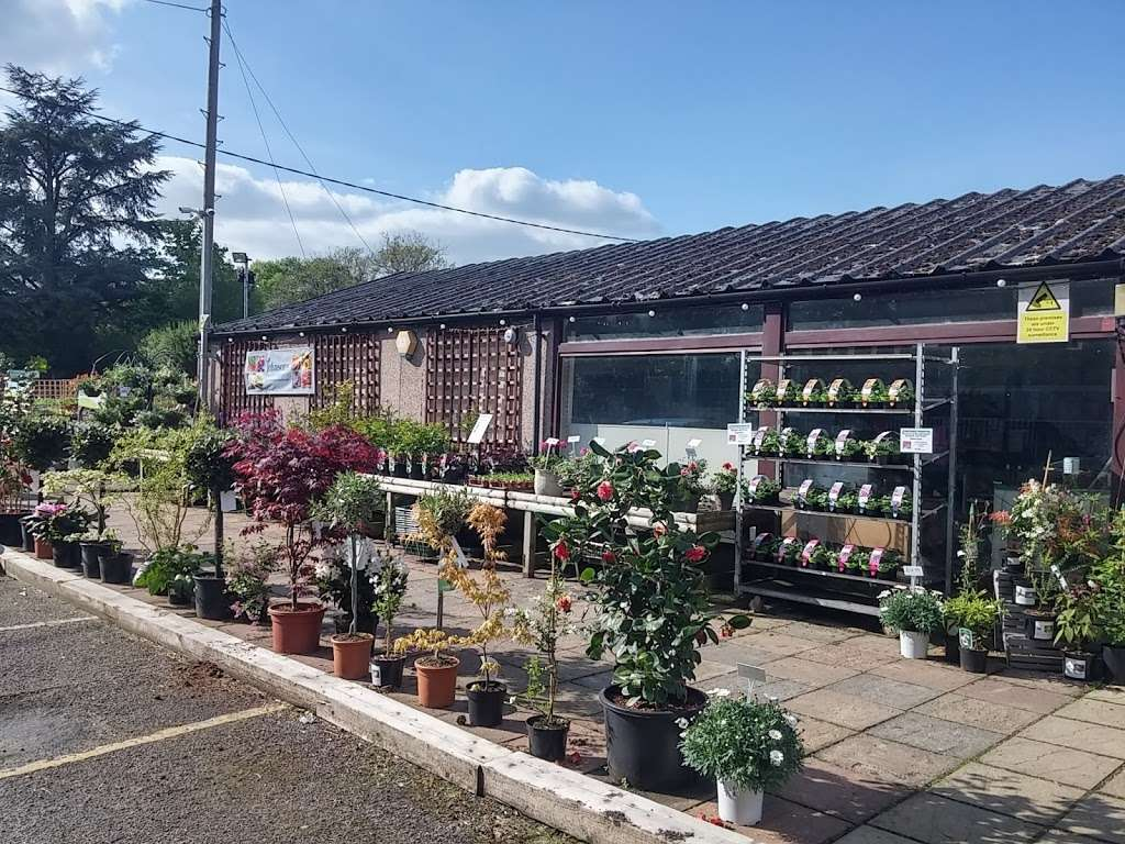 Buckland Nurseries Garden Centre - store  | Photo 1 of 10 | Address: Reigate Rd, Reigate, Betchworth RH2 9RE, UK | Phone: 01737 242990