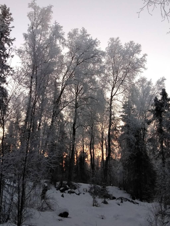 Arnold L. Muldoon Park - park  | Photo 2 of 8 | Address: 7600 E Northern Lights Blvd, Anchorage, AK 99504, USA | Phone: (907) 343-4355