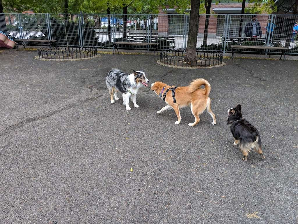 Pier 84 Dog Run - park  | Photo 10 of 10 | Address: 353 West St, New York, NY 10036, USA