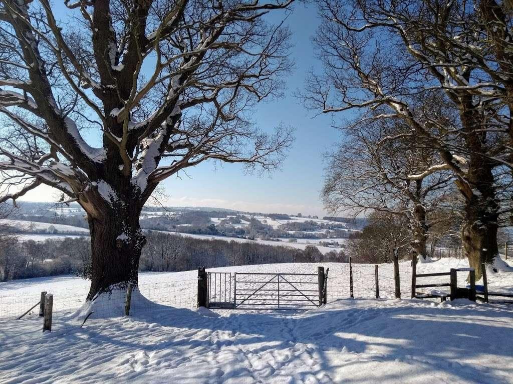 Burrswood Health and Wellbeing - health  | Photo 6 of 10 | Address: Bird in Hand Lane, Groombridge, Tunbridge Wells TN3 9PY, UK | Phone: 01892 865988