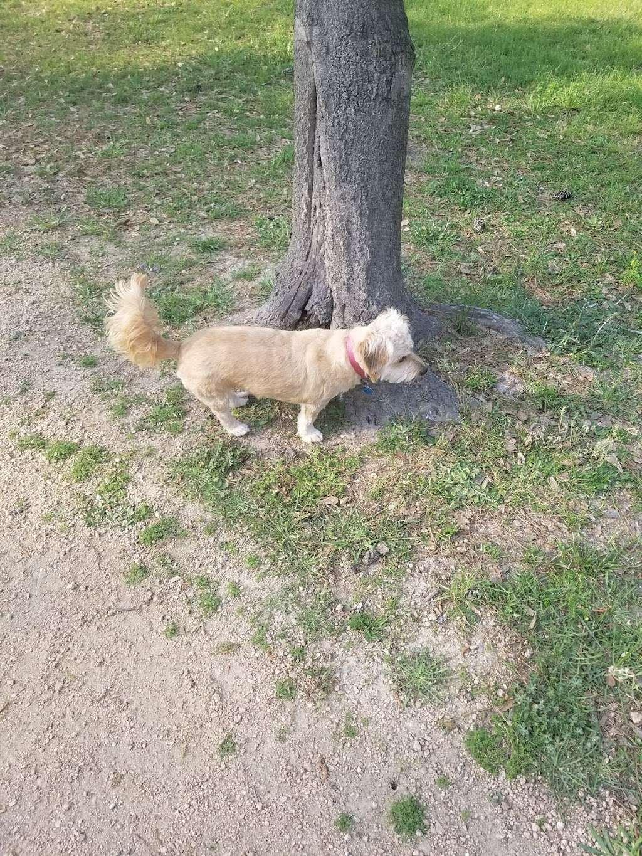 Bibi & Mini-Me Bush Dog Park - park  | Photo 9 of 10 | Address: 4129 Spring Creek Dr, Spring, TX 77373, USA | Phone: (281) 353-8100