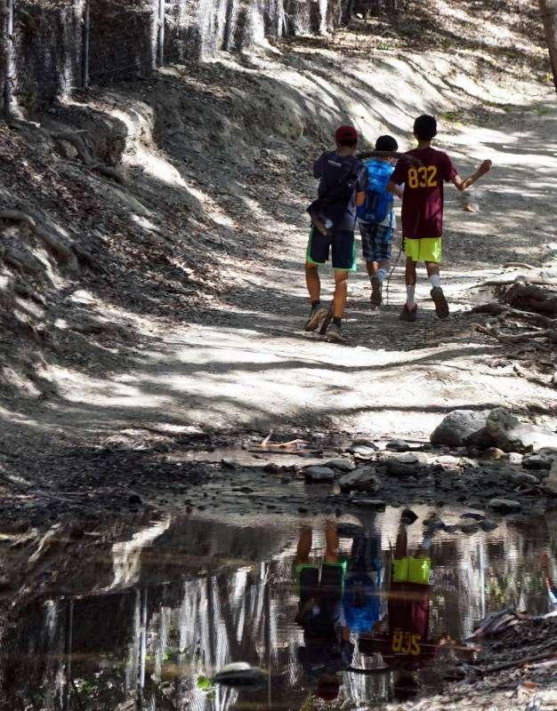 Walnut Creek Trail - park  | Photo 7 of 10 | Address: 1079 S San Dimas Ave, San Dimas, CA 91773, USA