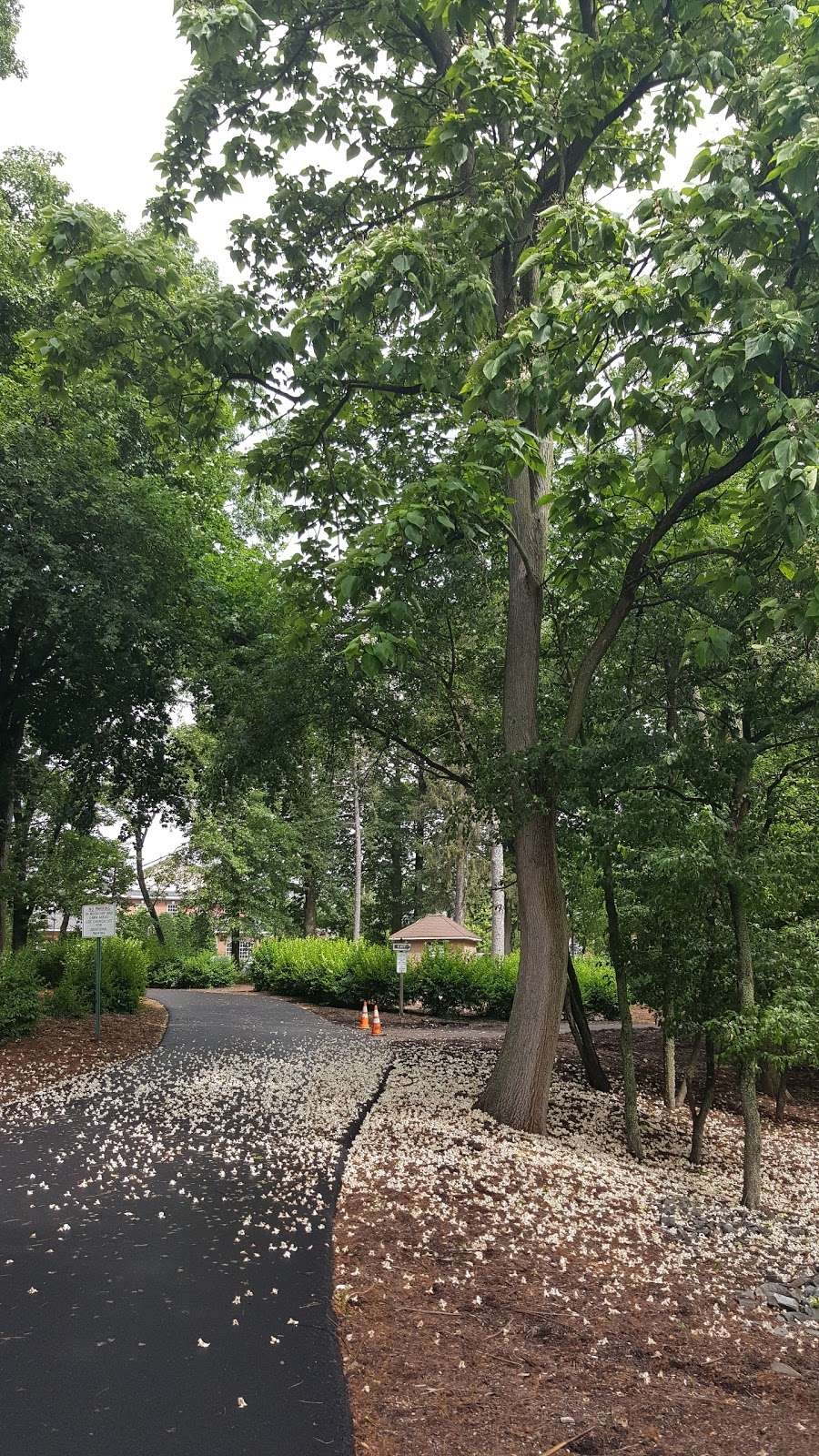 Wyckoff Community Park - park    Photo 4 of 10   Address: 475 Wyckoff Ave, Wyckoff, NJ 07481, USA   Phone: (201) 891-5571