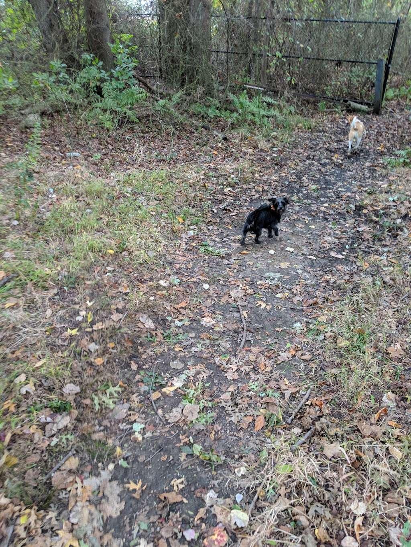 Losen Slote Creek Park - park  | Photo 10 of 10 | Address: Mehrhof Rd, Little Ferry, NJ 07643, USA