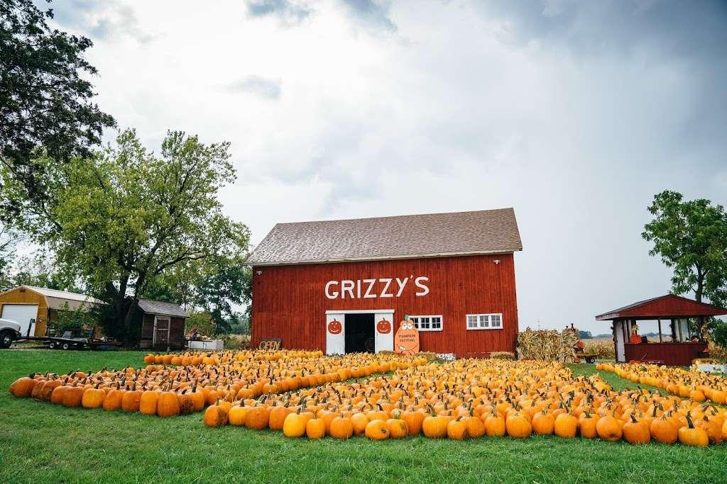 Grizzy's Pumpkins - store    Photo 7 of 10   Address: Marengo, IL 60152, USA