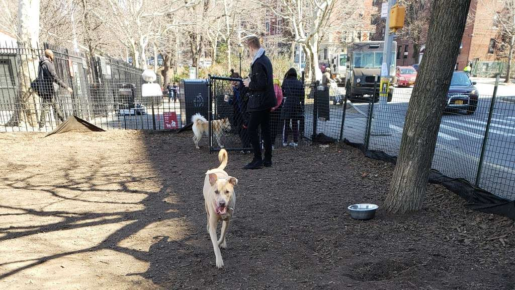 142nd Street Dog Run - park  | Photo 7 of 10 | Address: 675 Riverside Dr, New York, NY 10031, USA | Phone: (212) 870-3070