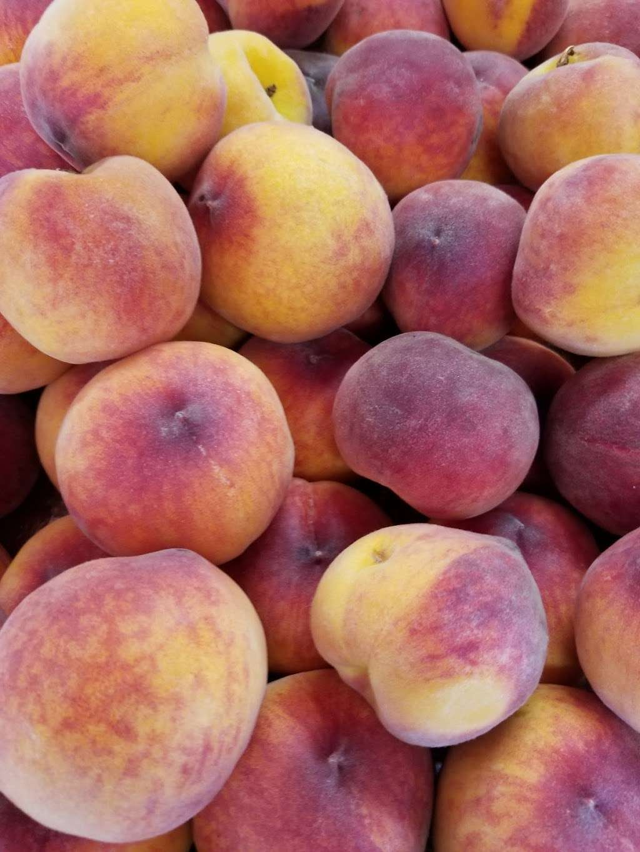 Palace of Fruit - store  | Photo 8 of 10 | Address: 8 Ely Rd N, Petaluma, CA 94954, USA | Phone: (707) 795-5311