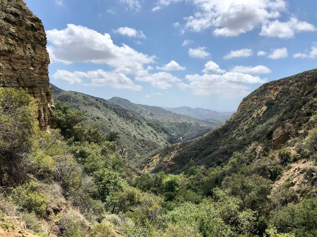 Black Star Canyon Falls - park    Photo 9 of 10   Address: 10499, 10967 Black Star Canyon Rd, Silverado, CA 92676, USA