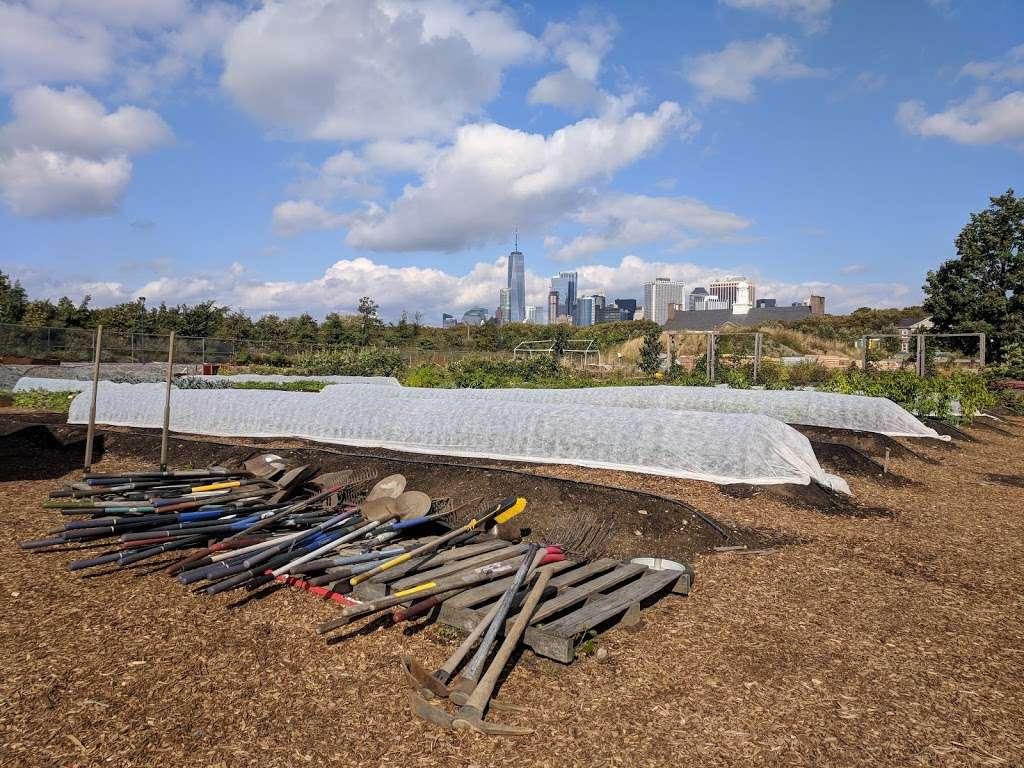 Governors Island Teaching Garden - park  | Photo 6 of 10 | Address: 778 Enright Rd, New York, NY 10004, USA | Phone: (212) 788-7900