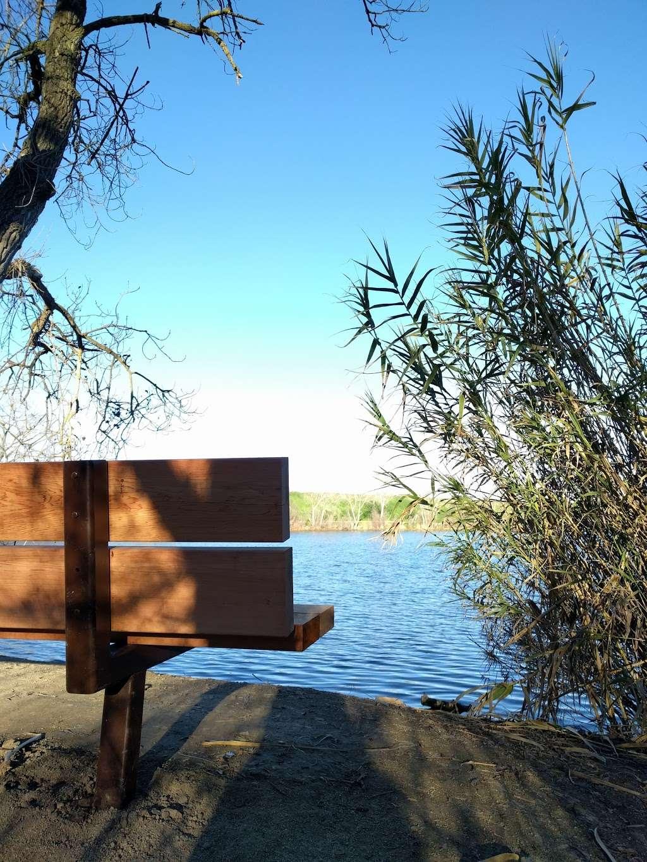 Boris Lake Bench - park  | Photo 6 of 7 | Address: Pleasanton, CA 94566, USA