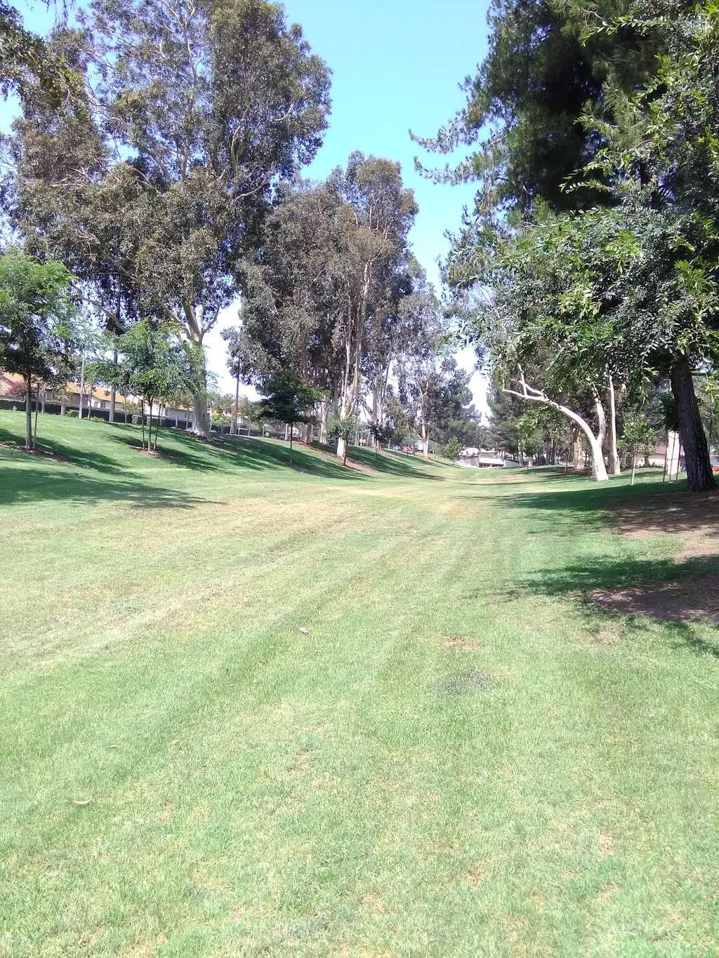 Creekside Park - park  | Photo 2 of 10 | Address: 3151 E Riverside Dr, Ontario, CA 91761, USA