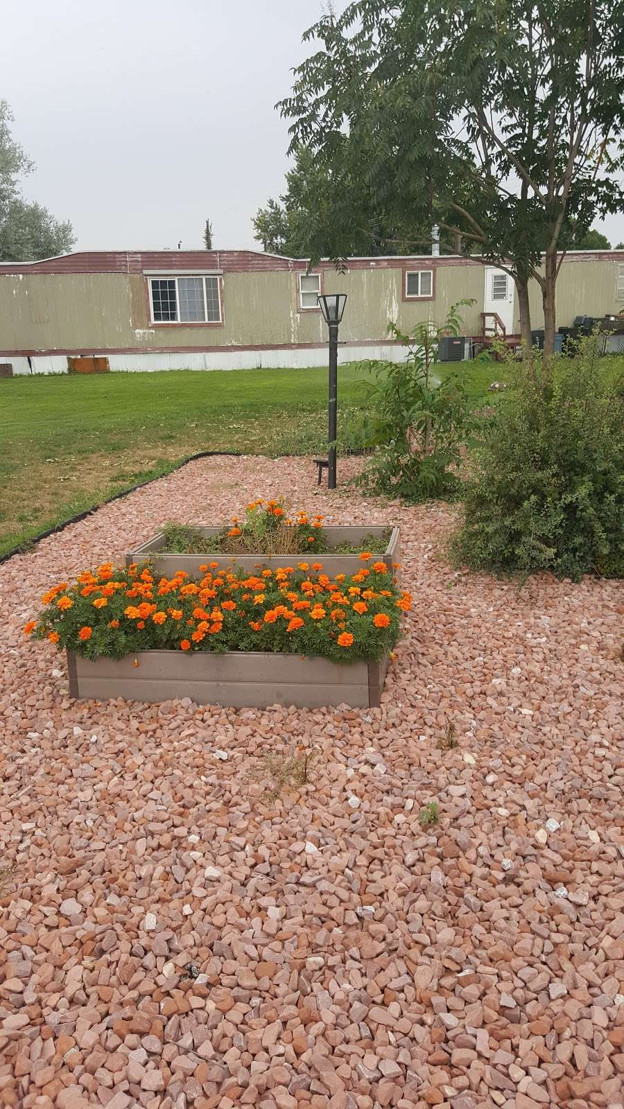 Country Estates Mobile Home Park - rv park    Photo 7 of 10   Address: 3500 35th Ave, Greeley, CO 80634, USA   Phone: (970) 330-2690