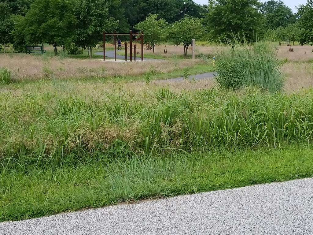 Pennington Park - park  | Photo 2 of 10 | Address: 801 Creek Rd, Delanco, NJ 08075, USA | Phone: (609) 265-5858