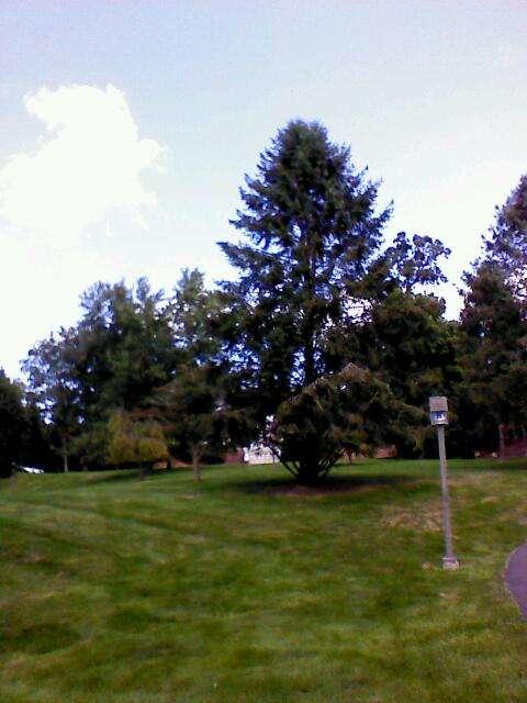 Keiss Library - library  | Photo 1 of 1 | Address: 1325 Sumneytown Pike, Ambler, PA 19002, USA | Phone: (215) 646-7300