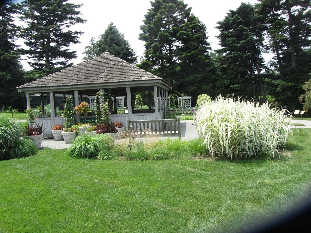 The Jane Watson Irwin Perennial Garden - park  | Photo 5 of 10 | Address: 2900 Southern Blvd, The Bronx, NY 10458, USA | Phone: (718) 817-8700