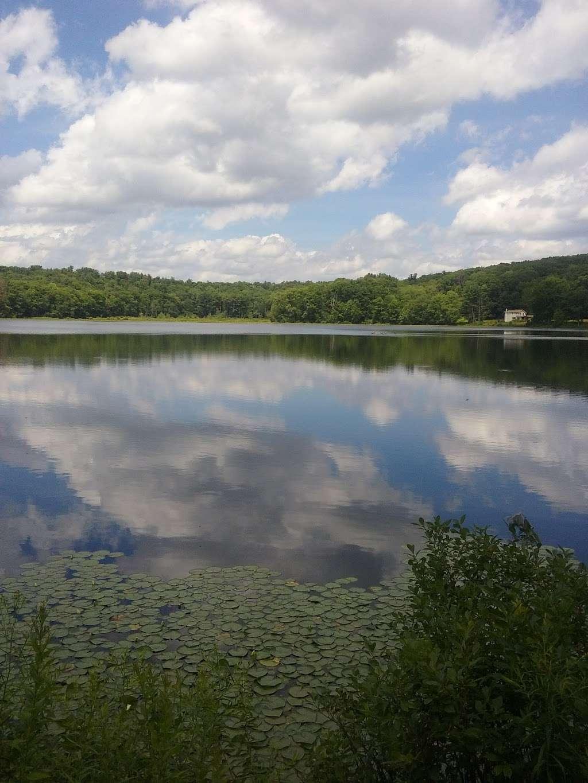 Moon Lake State Forest Recreation Area - park  | Photo 7 of 10 | Address: Hunlock Creek, PA 18621, USA