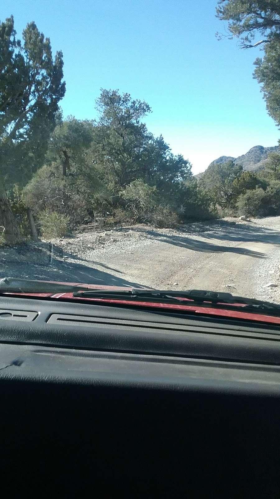 Camp Potosi Park - park    Photo 8 of 10   Address: 11480 Mount Potosi Canyon Rd, Las Vegas, NV 89124, USA   Phone: (702) 455-8200