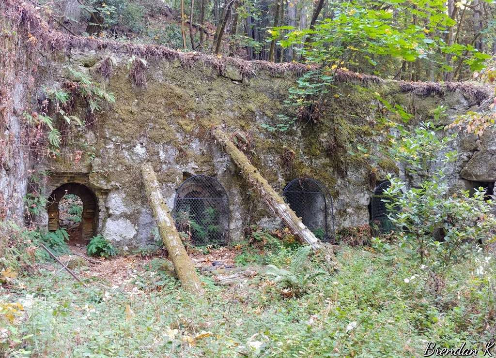 Old Lime Kiln Ruins - park  | Photo 9 of 10 | Address: Fall Creek Trail, Felton, CA 95018, USA