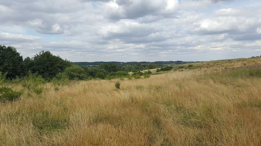 St Pauls Cray Hill Country Park - park  | Photo 3 of 10 | Address: Star Ln, Orpington BR5 3JA, UK | Phone: 0300 303 8658