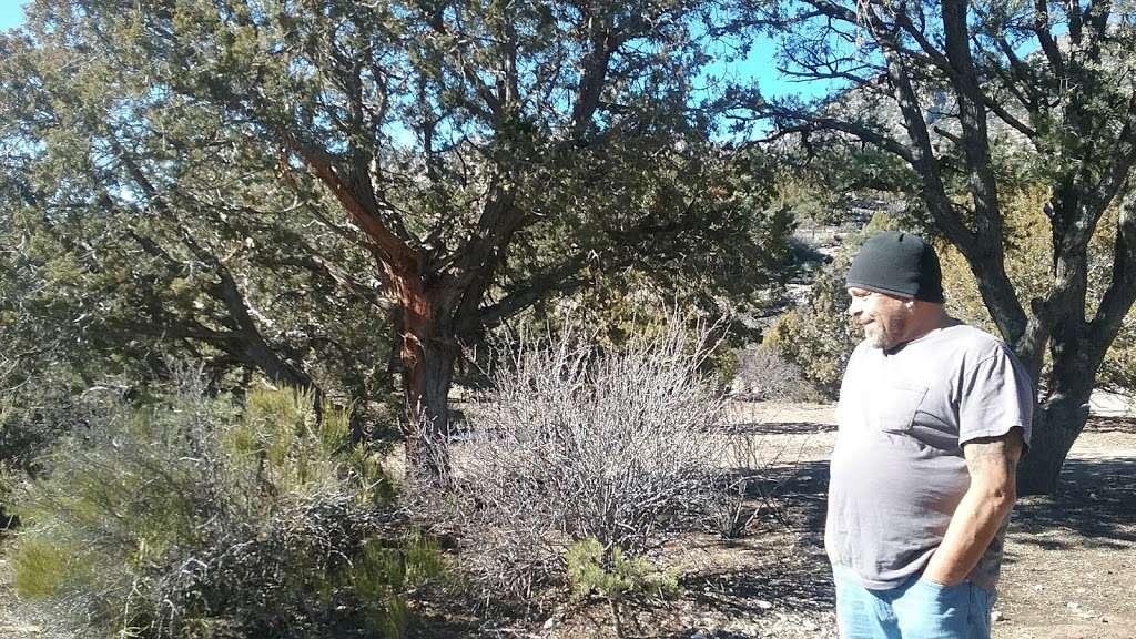 Camp Potosi Park - park    Photo 3 of 10   Address: 11480 Mount Potosi Canyon Rd, Las Vegas, NV 89124, USA   Phone: (702) 455-8200