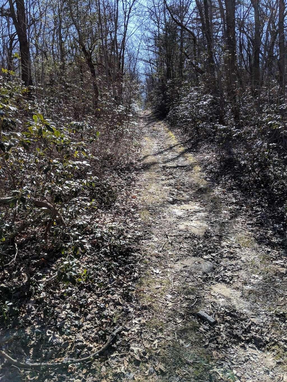 Rocky Knob Trail Head - park  | Photo 3 of 10 | Address: Ridge Rd, Shippensburg, PA 17257, USA | Phone: (717) 352-2211