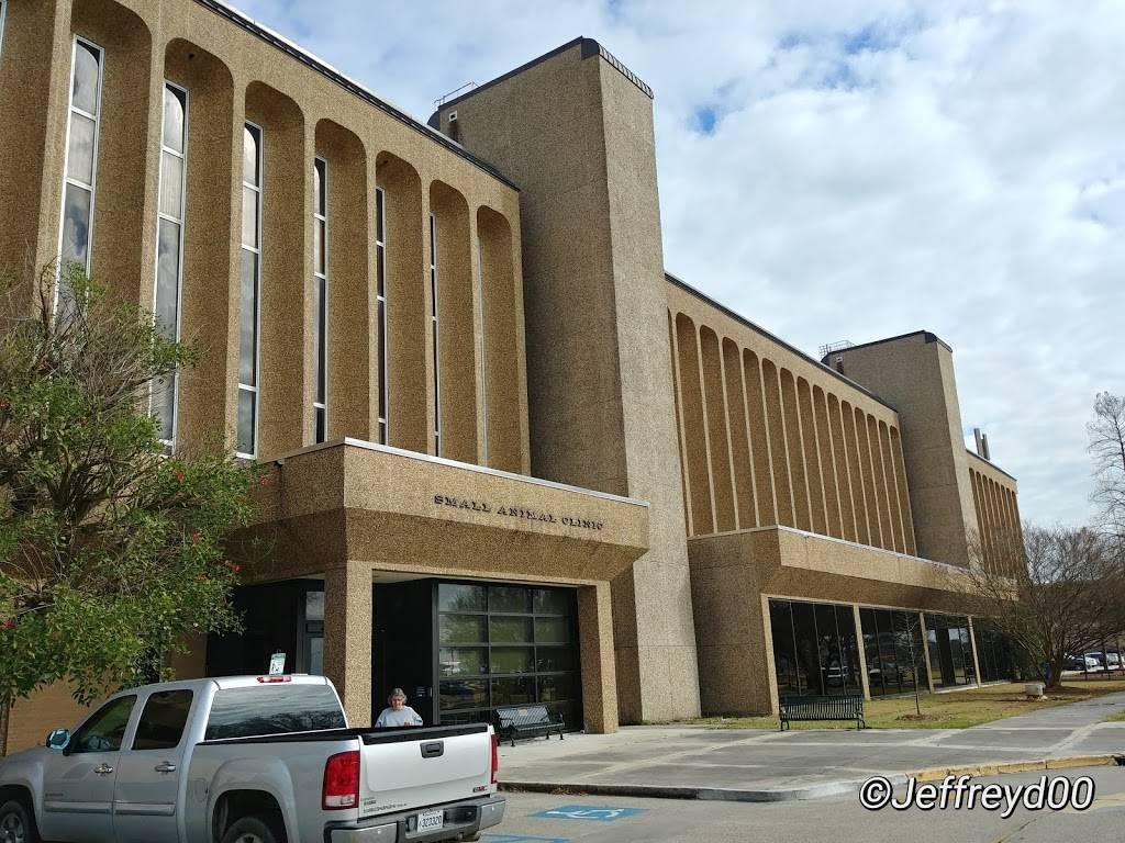 LSU School of Veterinary Medicine - veterinary care  | Photo 9 of 9 | Address: Skip Bertman Dr, Baton Rouge, LA 70803, USA | Phone: (225) 578-9900