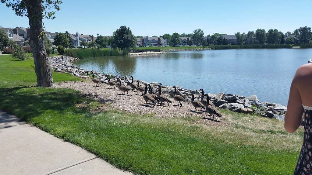 Hunters Glen Lake Park - park    Photo 1 of 10   Address: Thornton, CO 80241, USA   Phone: (303) 255-7830