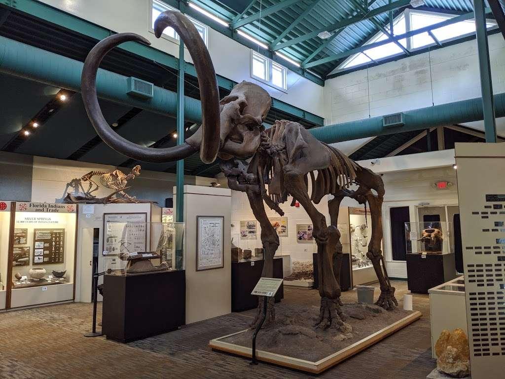 Silver River Museum & Environmental Education Center - museum  | Photo 1 of 10 | Address: 1445 Northeast 58th Avenue, Ocala, FL 34470, USA | Phone: (352) 236-5401