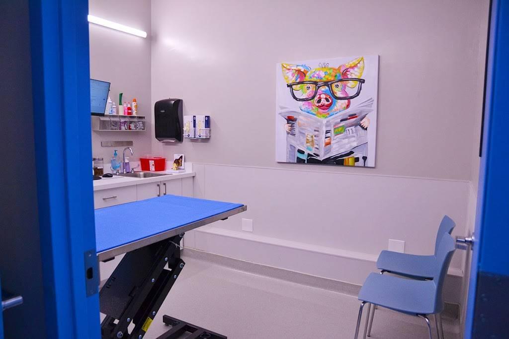 Hoboken Vets Animal Clinic - veterinary care  | Photo 2 of 10 | Address: 1160 Maxwell Ln, Hoboken, NJ 07030, USA | Phone: (201) 559-5133