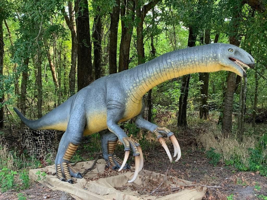 Heard Natural Science Museum & Wildlife Sanctuary - museum  | Photo 4 of 7 | Address: 1 Nature Pl, McKinney, TX 75069, USA | Phone: (972) 562-5566