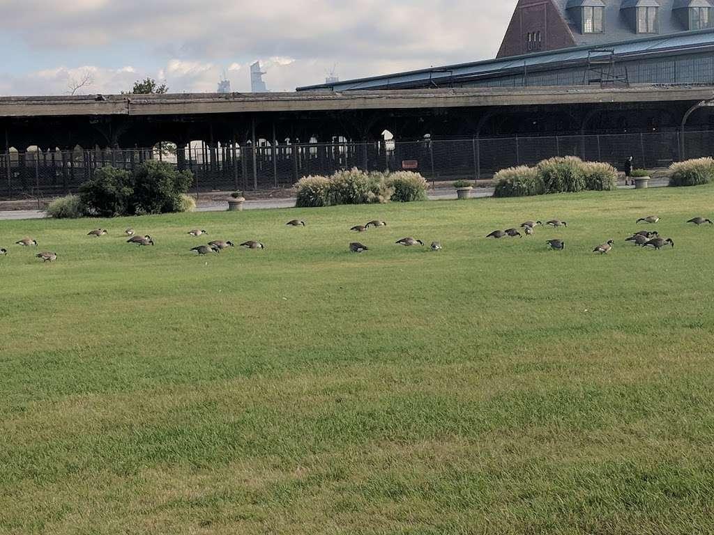 Liberty State Park - park  | Photo 6 of 10 | Address: 200 Morris Pesin Dr, Jersey City, NJ 07305, USA | Phone: (201) 915-3403