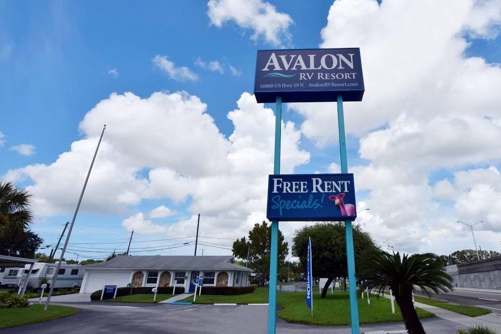 Avalon RV Resort - rv park  | Photo 3 of 6 | Address: 16860 US Hwy 19 N, Clearwater, FL 33764, USA | Phone: (727) 531-6124