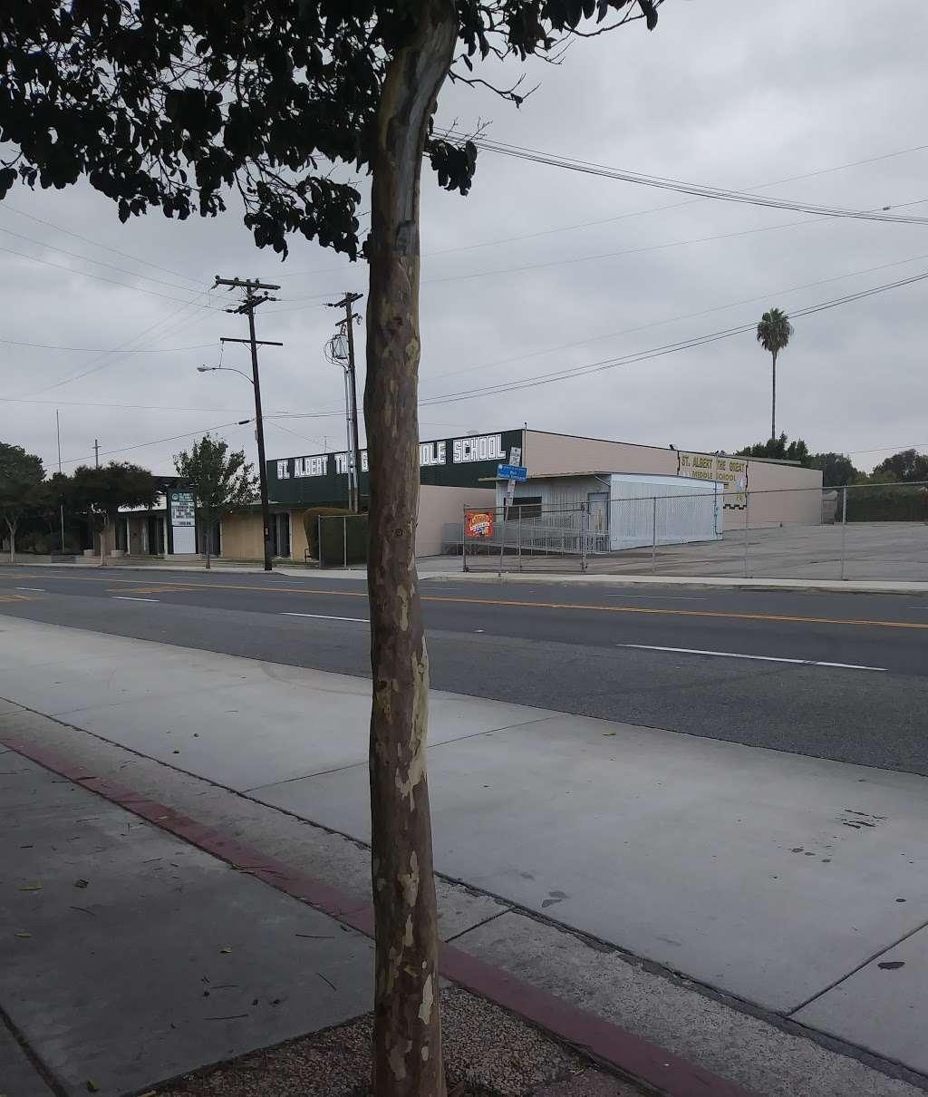 St Albert the Great School - school    Photo 2 of 7   Address: 804 E Compton Blvd, Rancho Dominguez, CA 90220, USA   Phone: (310) 323-4559
