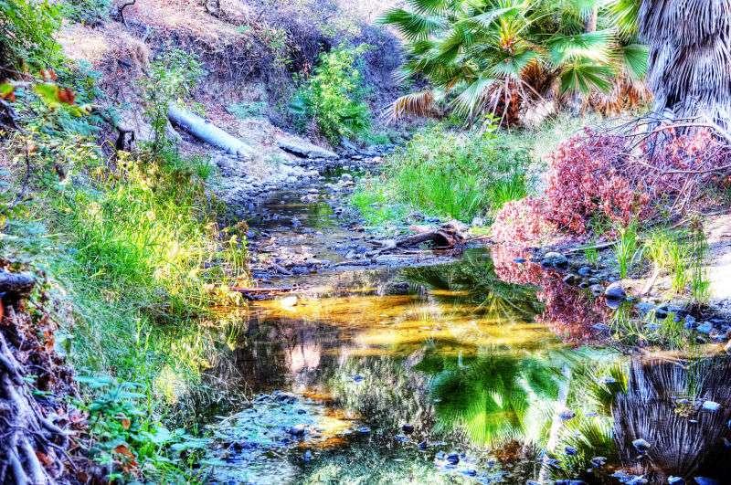 Walnut Creek Trail - park  | Photo 1 of 10 | Address: 1079 S San Dimas Ave, San Dimas, CA 91773, USA