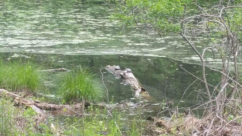 Sylvan Glen Nature Preserve - park  | Photo 2 of 10 | Address: Hunterbrook Rd, Mohegan Lake, NY 10547, USA | Phone: (914) 245-4650