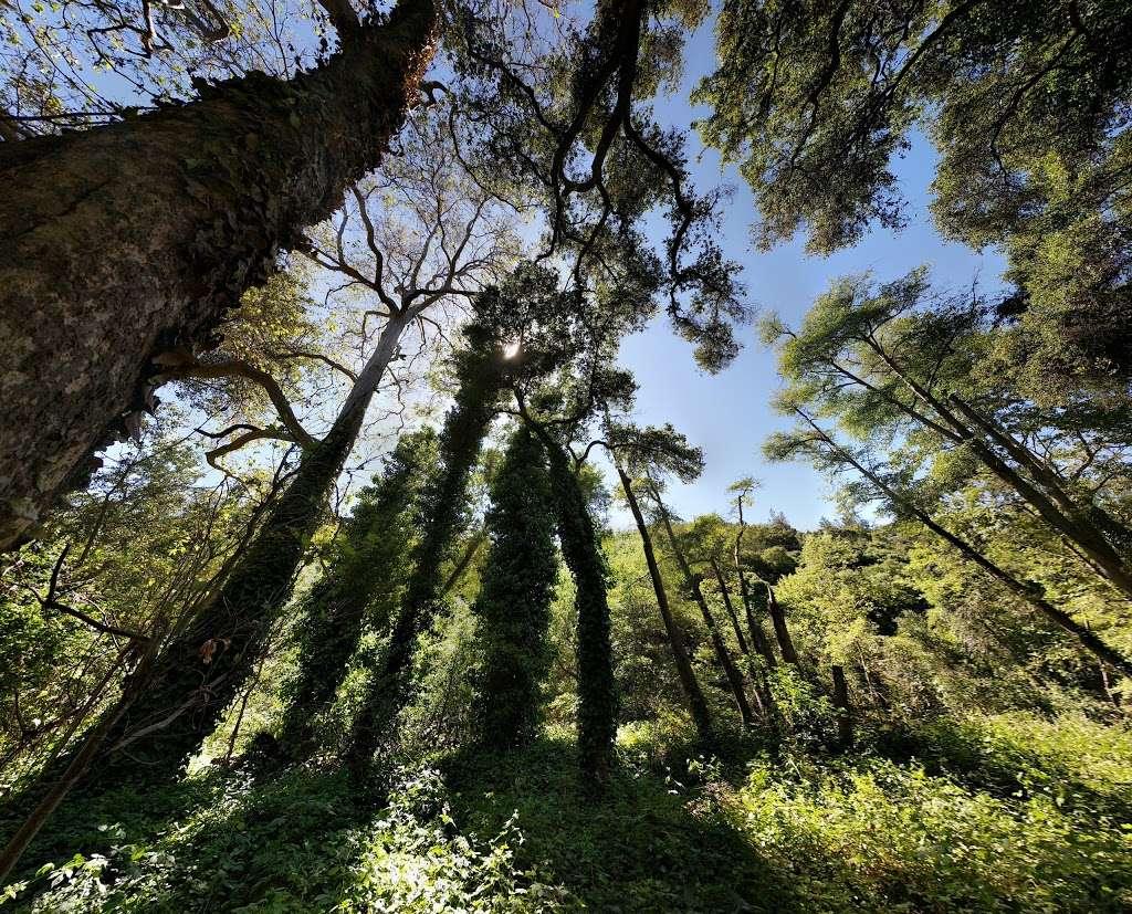 Jones Creek Trail Entrance - park    Photo 3 of 10   Address: 216-298 Jones Rd, Los Gatos, CA 95030, USA