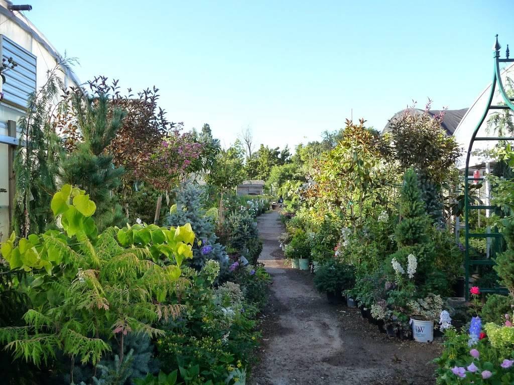 Edwards Greenhouse - florist  | Photo 3 of 10 | Address: 4106 Sand Creek St, Boise, ID 83703, USA | Phone: (208) 342-7548