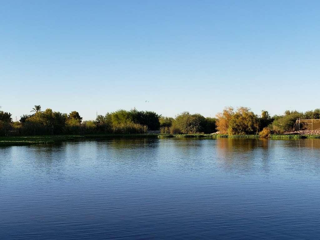 Tres Rios Wetlands Hayfield Site - park  | Photo 4 of 10 | Address: 8209 S 70th Ln, Laveen Village, AZ 85339, USA